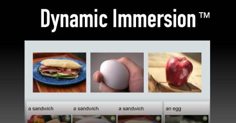 Dynamic Immersion
